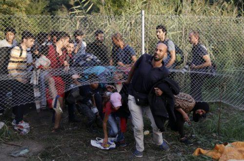 #المجر: بناء جدار جديد لمنع تدفق #اللاجئين