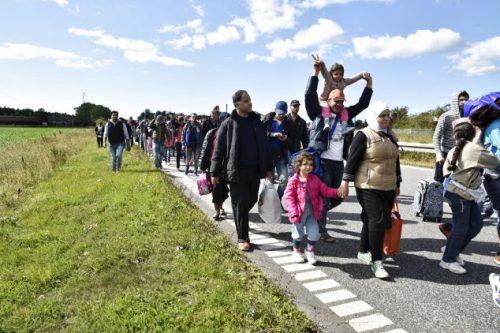 استمرار تدفق #المهاجرين الأفارقة على السواحل #الإسبانية