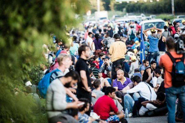 إجراءات طلب #لم_الشمل في #ألمانيا