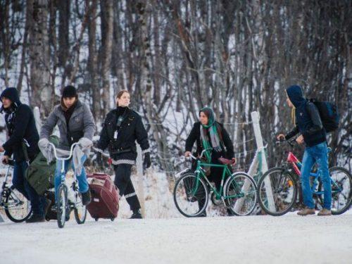 #النمسا: تراجع طلبات #اللجوء بمقدار النصف