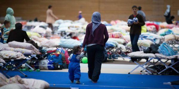 دراسة: #اللاجئون ليسوا سبب فقر  أطفال #ألمانيا