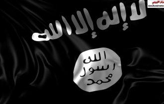 داعش ما بعد الدولة , الآليةُ الإعلامية ومقاتلو التنظيم