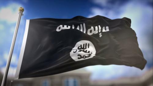 """المقاتلون الاجانب في """"الدولة الاسلامية """"داعش،الادوار والانتماء. بقلم الدكتورة سارة البرزنجي"""