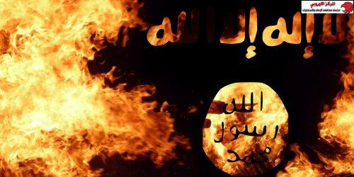 محمي: تراجع دعاية تنظيم داعش واقتراب منظومته الإعلامية من الانهيار