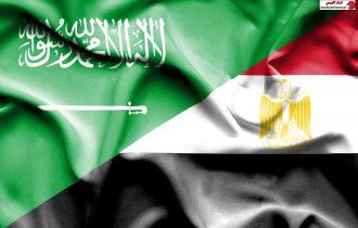 """جهود سعودية مصرية لمواجهة """"فكر الاخوان"""" والتطرف. بقلم الدكتور عبد الحفيظ  محبوب"""